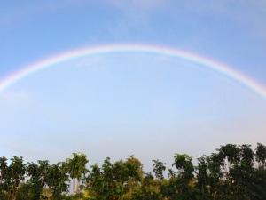 rainbow spot